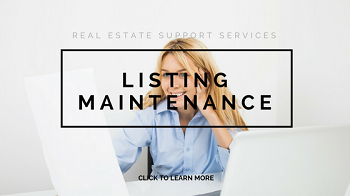 Listing Syndication and Maintenance