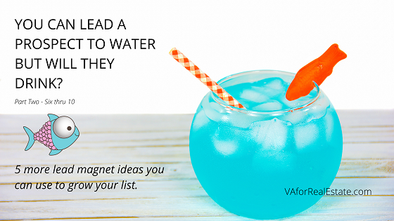 You Can Lead a Prospect to Water - Part 2 - Lead Magnet Ideas